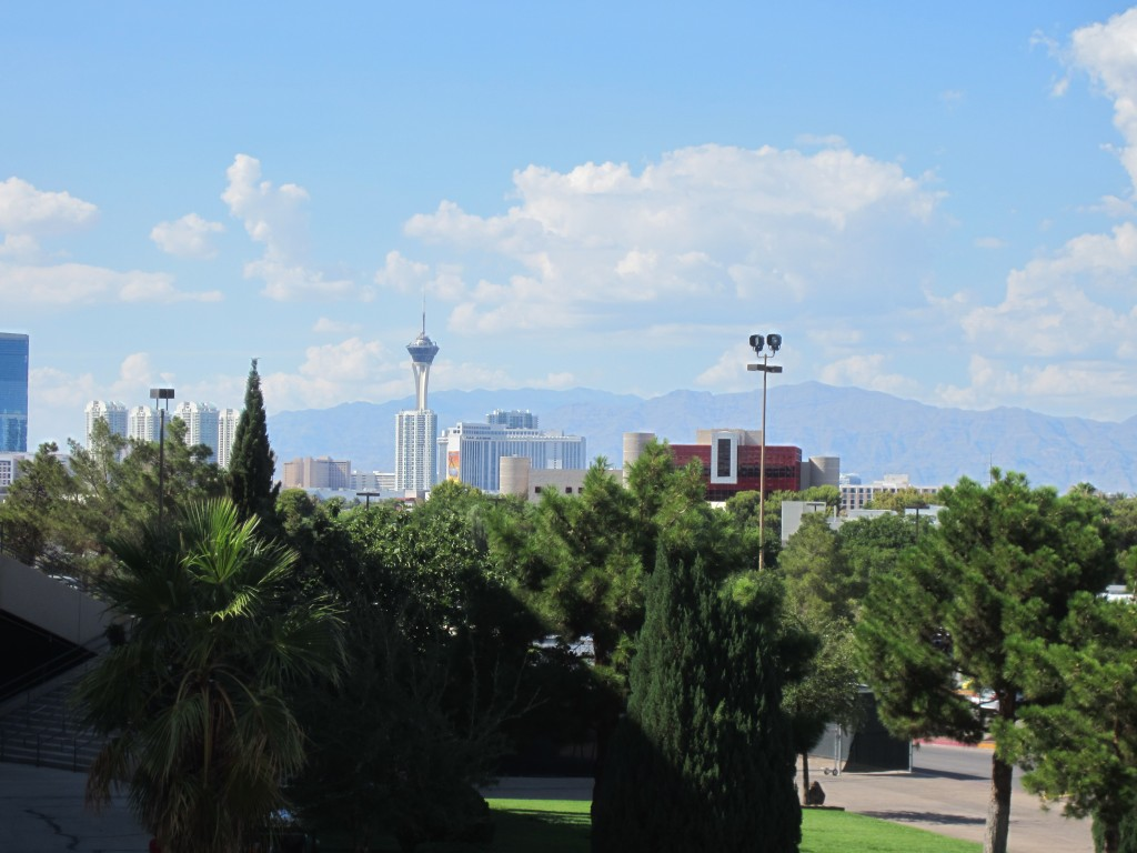 View from the steps of GA:  the city itself, with the Spring Mtns in the background